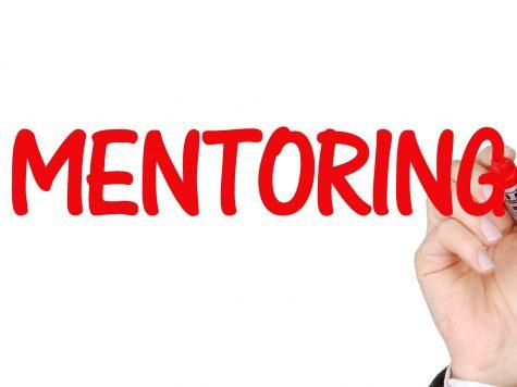 4 Peran Seorang Mentor Bagi Para Pebisnis Muda