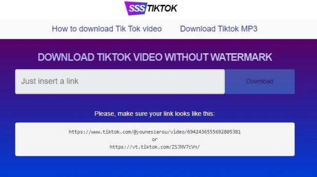 Situs SS Tiktok, Cara Unduh Video TikTok Tanpa Watermark